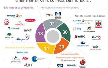 Bancassurance to catch on in Vietnam's life insurance market