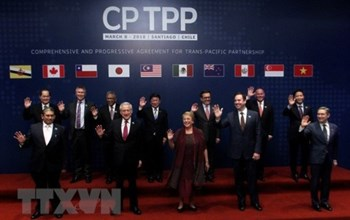 CPTPP OFFICIALLY TAKES EFFECT IN VIETNAM
